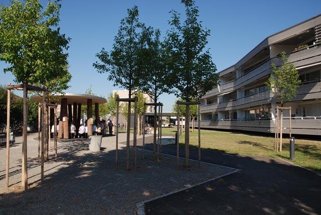 Gestern Morgen wurde der neue Rheinfels-Park in Stein eingeweiht